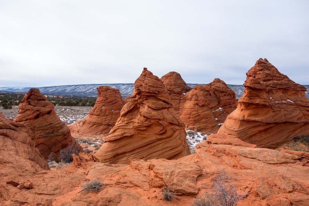SouthCoyoteButtes-11